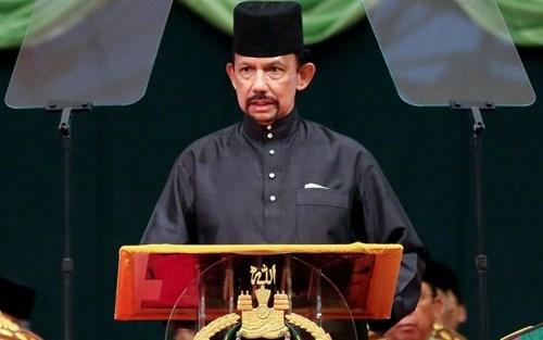 Sultan de Brunei realizara visita de Estado a Vietnam hinh anh 1