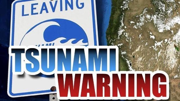 Emiten alerta de tsunami en seis provincias surenas de Tailandia hinh anh 1