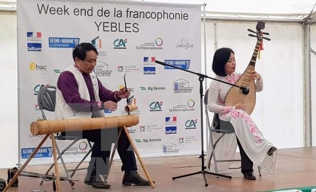 Destacan particularidades culturales vietnamitas en fiesta de Francofonia en Francia hinh anh 1