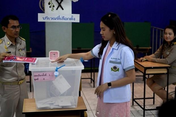 Tailandia pospone anuncio de resultados preliminares de elecciones generales hinh anh 1