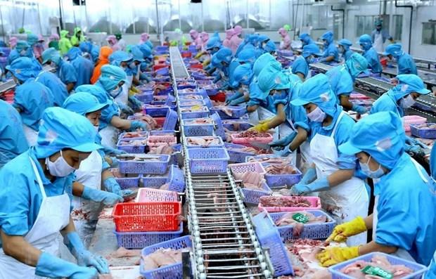 Se presentan nuevas oportunidades para empresas vietnamitas con el Acuerdo Transpacifico hinh anh 1