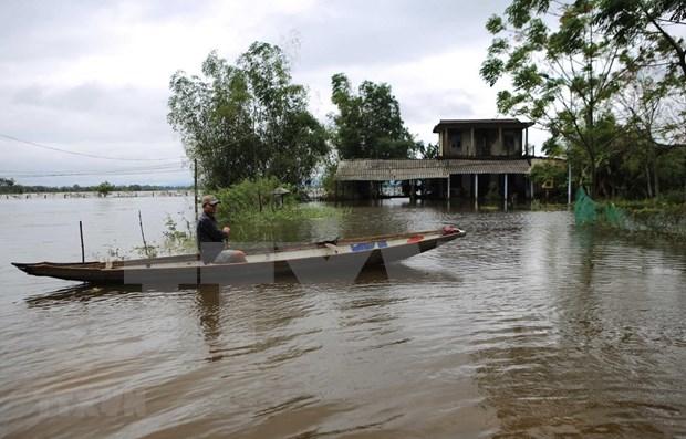 Intercambian experiencias Estados Unidos y Vietnam sobre enfrentamiento a calamidades naturales hinh anh 1
