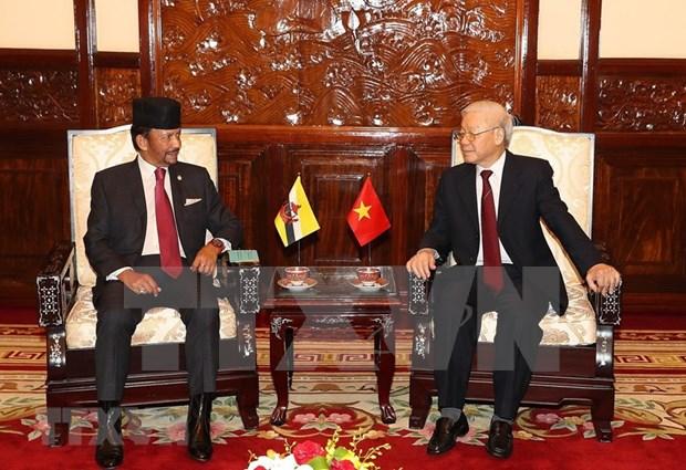 Ampliaran Vietnam y Brunei el comercio bilateral hinh anh 1
