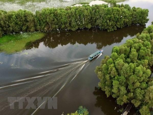 Promueven en Vietnam el turismo verde hinh anh 1