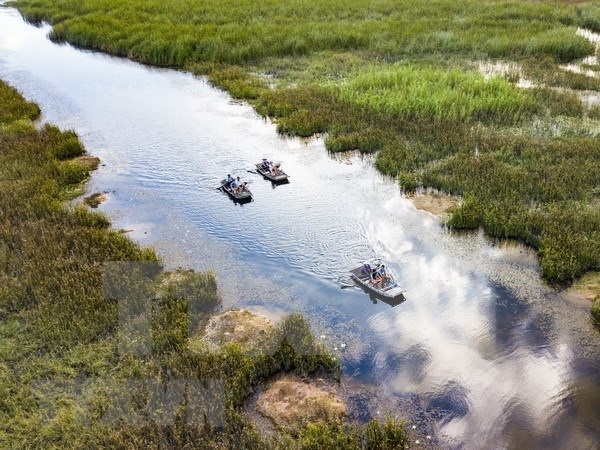 Promueve Vietnam la conservacion de areas protegidas hinh anh 1