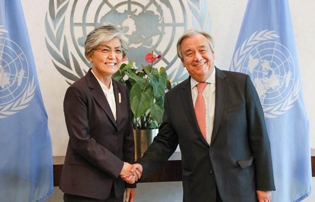 Respaldan la ONU y la ASEAN proceso de desnuclearizacion en peninsula coreana hinh anh 1