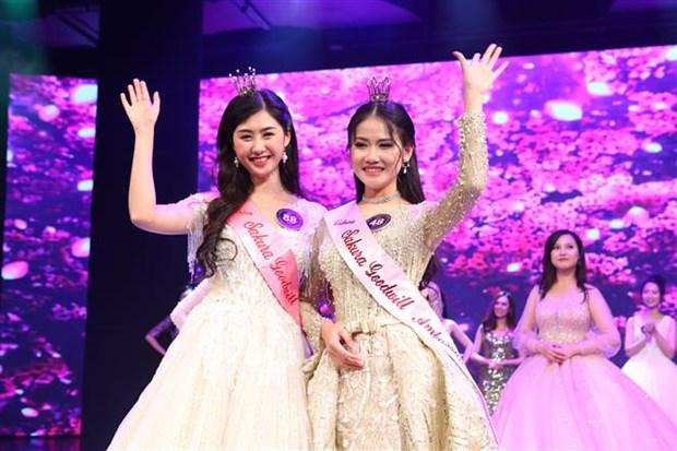 Eligen en Vietnam a Embajadoras de Buena Voluntad de la Flor de Sakura hinh anh 1