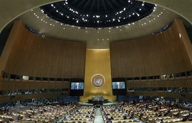 Aplaude Vietnam aprobacion de resolucion de Naciones Unidas contra financiamiento del terrorismo hinh anh 1