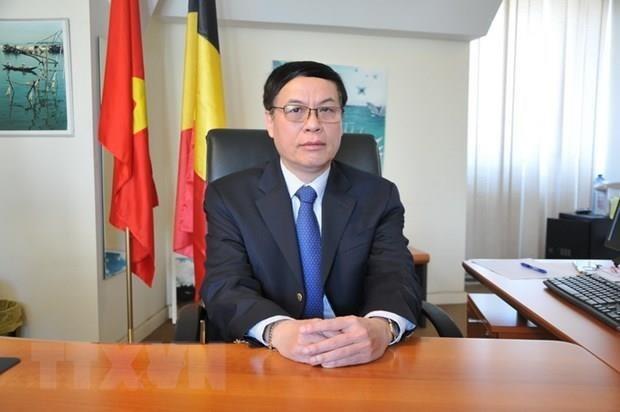 Fortalecen cooperacion Vietnam y la Union Europea hinh anh 1
