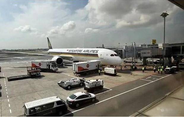 Suspende Singapur operaciones de dos aviones Boeing 787-10 Dreamliner hinh anh 1