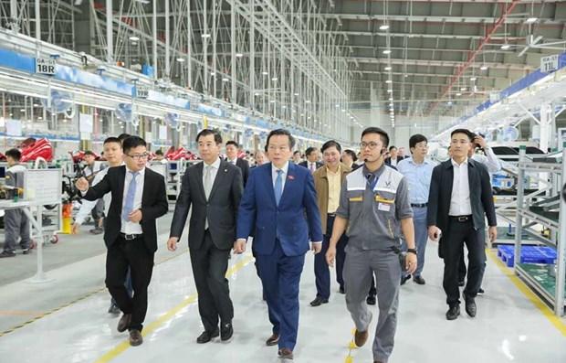 Realiza vicepresidente del Parlamento vietnamita visita de inspeccion a Hai Phong hinh anh 1