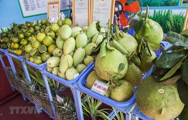 Decrecen en Vietnam ingresos por exportaciones agropecuarias y acuicolas en el primer trimestre del ano hinh anh 1