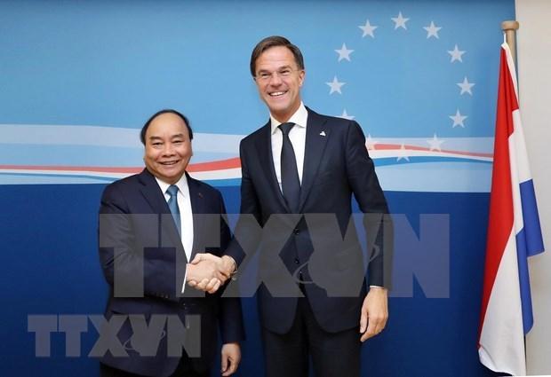 Primer ministro de Paises Bajos realizara visita oficial a Vietnam hinh anh 1
