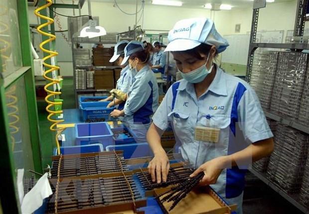 Presenta Vietnam en Belgica sus oportunidades de negocios hinh anh 1