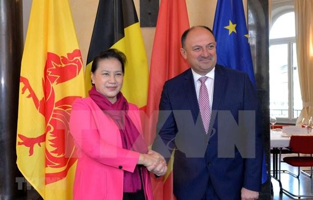 Presidenta de Asamblea Nacional de Vietnam continua actividades en Belgica hinh anh 1