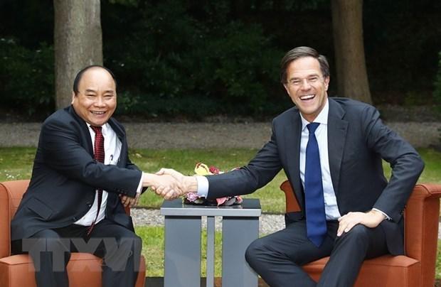 Primer ministro de Paises Bajos visitara Vietnam proxima semana hinh anh 1