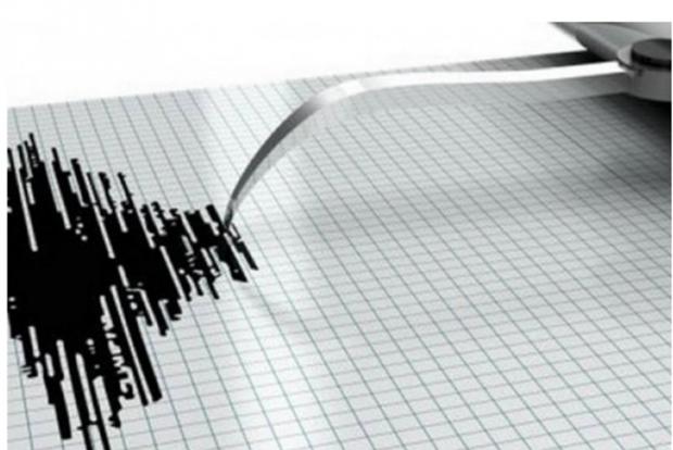 Fuertes terremotos golpean a Timor Leste e Indonesia hinh anh 1