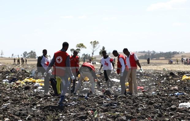Participaran expertos indonesios en investigacion de siniestro aereo en Etiopia hinh anh 1