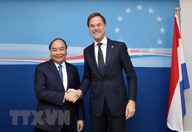 Planean Vietnam y Paises Bajos establecer asociacion integral hinh anh 1