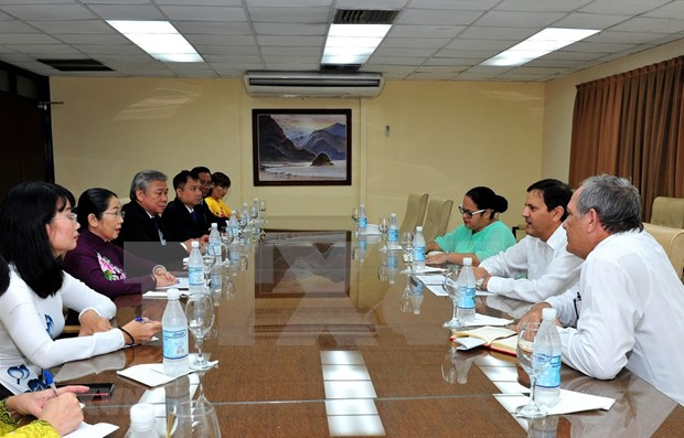 Explora delegacion vietnamita en Cuba potencialidades para ampliar cooperacion bilateral hinh anh 1