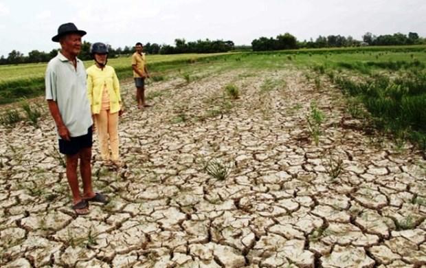 Destacan en Vietnam importancia de la gestion para enfrentar los riesgos climaticos hinh anh 1