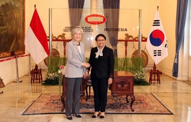 Corea del Sur e Indonesia fortalecen la relacion bilateral hinh anh 1