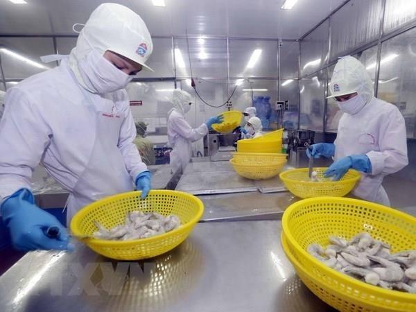 Apunta Vietnam alcanzar 4,2 mil millones de dolares por exportaciones de camarones en 2019 hinh anh 1