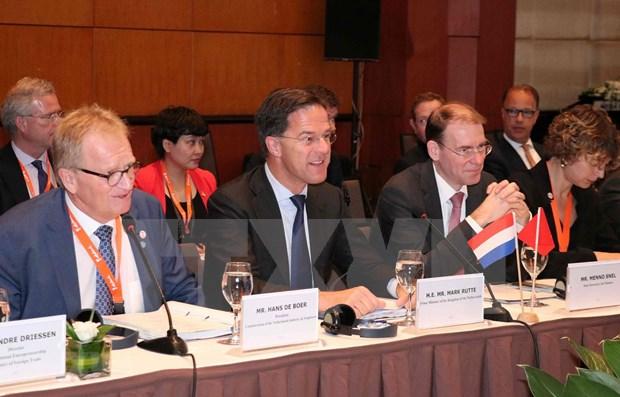 Facilitara Vietnam inversiones de empresas neerlandesas hinh anh 1