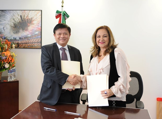 Fomentan cooperacion agencia de noticias vietnamita VNA y la mexicana Notimex hinh anh 1