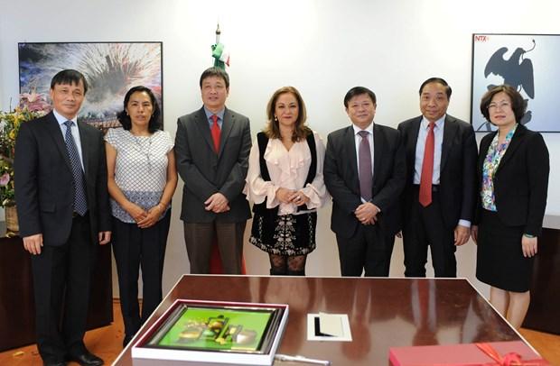 Fomentan cooperacion agencia de noticias vietnamita VNA y la mexicana Notimex hinh anh 3