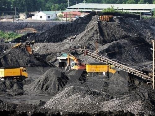 Aumenta Vietnam ventas de carbon en primer trimestre de 2019 hinh anh 1