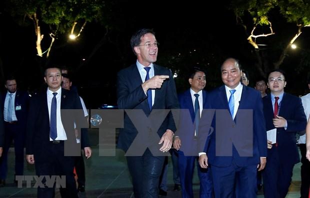 Paises Bajos es amigo del pueblo de Vietnam, afirma premier Mark Rutte hinh anh 1