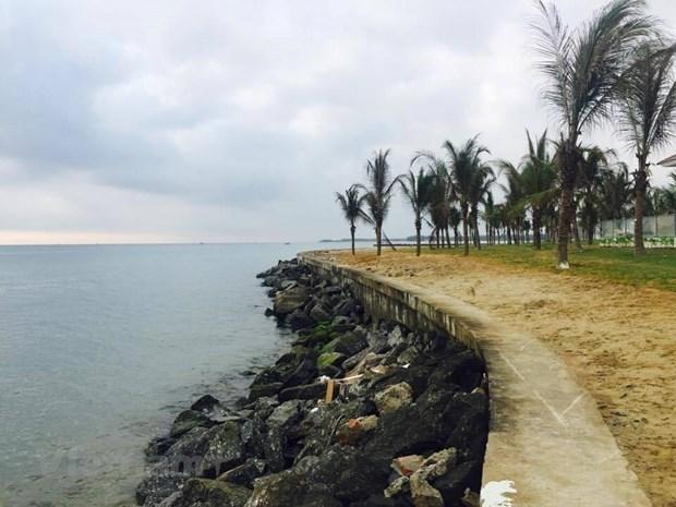 Colaboran Paises Bajos y Vietnam en la lucha contra la erosion costera hinh anh 1