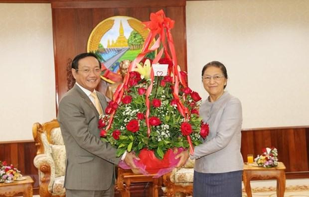 Dirigentes vietnamitas felicitan a sus homologos de Laos por el tradicional Ano Nuevo hinh anh 1