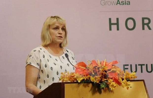 Vietnam y Paises Bajos comparten experiencias de cultivo hinh anh 1