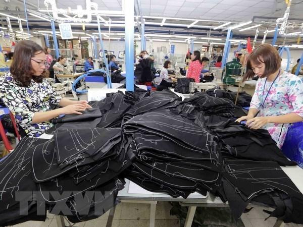 Llaman en Vietnam a incrementar salarios de trabajadores textiles hinh anh 1