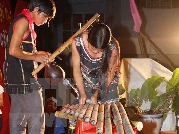 Presentaran en Vietnam instrumentos musicales de etnias nacionales en jornada cultural hinh anh 1