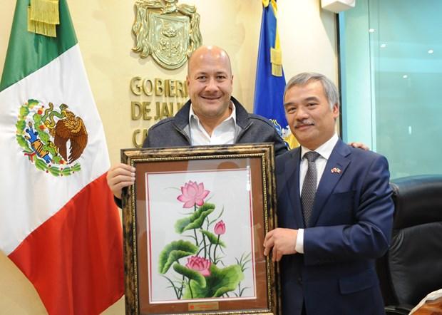 Promueven paises de ASEAN en Mexico comercio con estado de Jalisco hinh anh 5