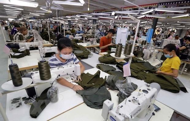 Buenas perspectivas para las exportaciones vietnamitas a la Republica Checa hinh anh 1