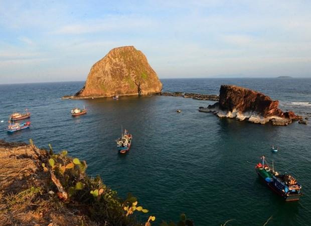 Exige Vietnam proteccion para arrecifes de coral en Hon Yen hinh anh 1