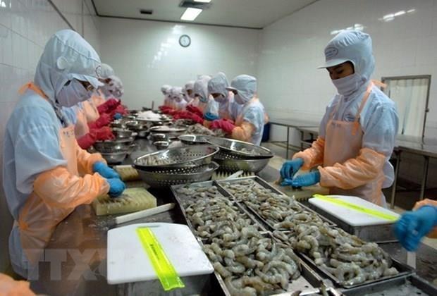 Se mantiene la UE como mayor mercado para la exportacion de camarones de Vietnam hinh anh 1