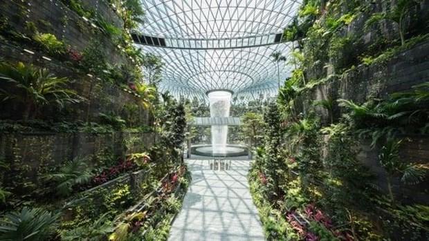 Singapur pone en operacion oficial nuevas instalaciones en el Aeropuerto de Changi hinh anh 1