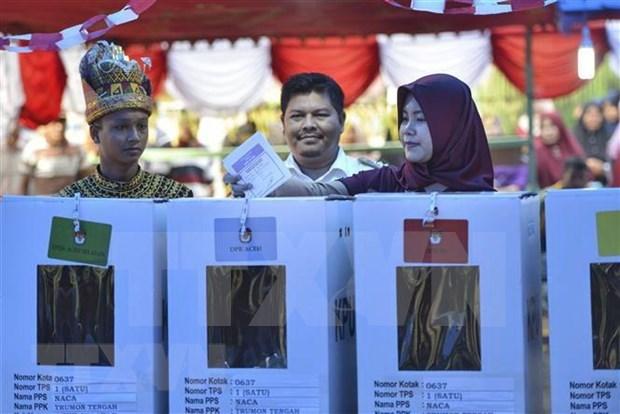 Indonesia promueve participacion de votantes en elecciones hinh anh 1