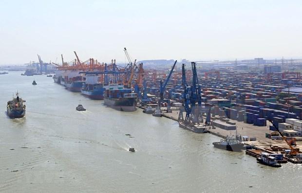 Reportan fuerte crecimiento de carga maritima en Vietnam durante primer trimestre de 2019 hinh anh 1