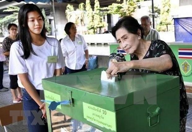 Repite Tailandia en seis colegios electorales las votaciones de comicios generales hinh anh 1