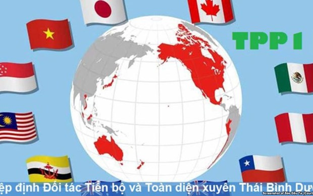 Impulsa ciudad vietnamita de Hai Phong implementacion del Acuerdo Integral y Progresivo de Asociacion Transpacifico hinh anh 1