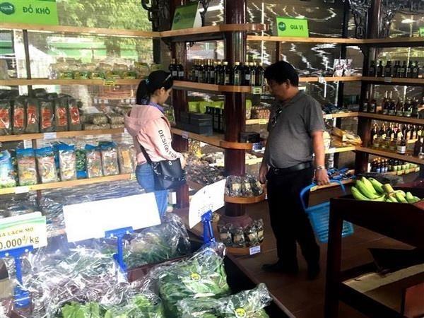Promoveran productos vietnamitas en Sudafrica hinh anh 1
