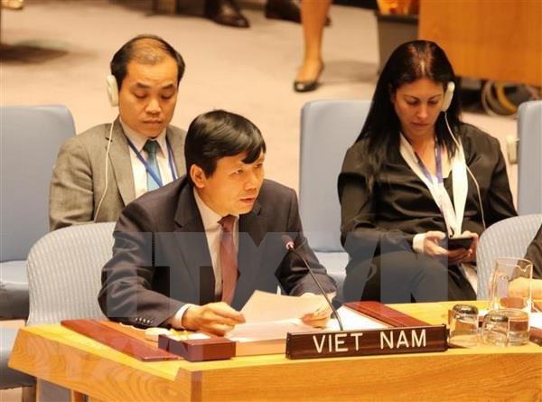 Aboga Vietnam por poner fin a la violencia sexual en conflictos armados hinh anh 1