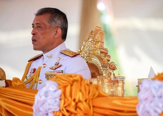 Mas de 200 mil personas asistiran a la coronacion del rey Rama X en Tailandia hinh anh 1