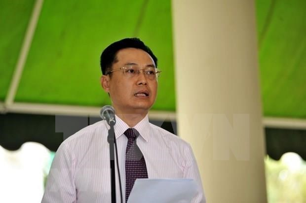 Destaca presidente de Haiti potencialidades de cooperacion entre Vietnam y su pais hinh anh 1